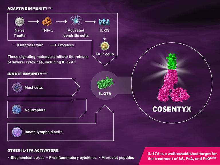 Cosentyx Mechanism of Action and IL-17A